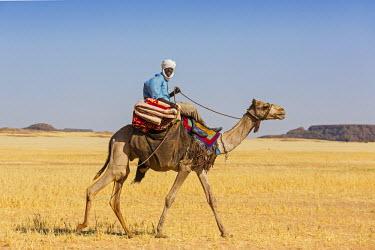 CHA0195 Chad, Terkei, Ennedi, Sahara.  A Toubou nomad rides across the arid plains near Terkei.