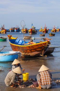 TPX35491 Vietnam, Mui Ne, Mui Ne Beach, Women Sorting Fishing Catch