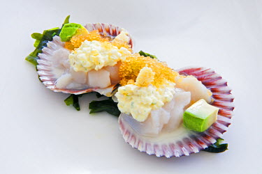 PER33620AW South America, Peru, Lima, Miraflores. Conchas Toshi - scallops in Tiger Milk - with ceviche juice, avocado, flying fish roe, tartar sauce, maca root and seaweed, the signature dish of chef Toshiro Ko...