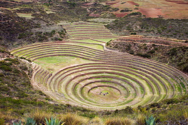 PER33729AW South America, Peru, Cusco, Sacred Valley, Maras. General view of Moray - verdant pre-Hispanic terraces made by the Incas and probably used for agricultural experiments