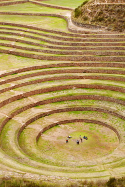 PER33730AW South America, Peru, Cusco, Sacred Valley, Maras. General view of Moray - verdant pre-Hispanic terraces made by the Incas and probably used for agricultural experiments