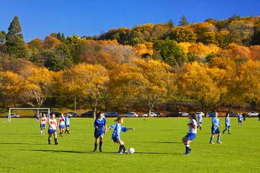 AU02DWA6991 Girls football and autumn colour, The Oval, Dunedin, South Island, New Zealand