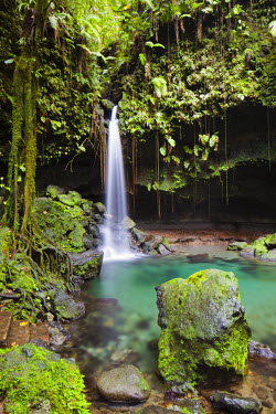DOM0082AW Dominica, Castle Bruce. Emerald Pool, one of the most popular tourist attractions of Dominica.