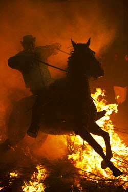 SPA5000 Spain, Castille & Leon, Avila, San Bartolome de Pinares, Men and horses jumping through fire on the eve of the feast of San Antonio, as a tradition to purify the animals.