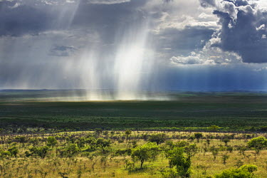 KEN8038 Kenya, Kajiado County; Maasai Wilderness Conservancy. A rainstorm over the Maasai plains.