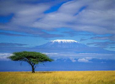 KEN8074 Kenya, Kajiado County, Chyulu.  Mount Kilimanjaro circa 1985.