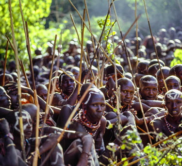 KEN8118 Kenya, Kajiado County, Mparasha.  A large gathering of Maasai warriors during an eunoto ceremony.