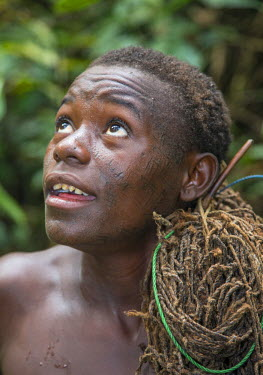 CAR0020 Central African Republic, Bayanga.  A Ba�Aka woman with facial tattoos and filed teeth carries her hunting net into the rainforest.