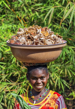 CAR0103 Central African Republic, Bayanga.  A Bayanga girl carrying a bowl of wild mushrooms on her heads.