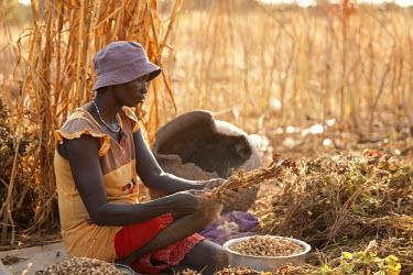 SSU0011AW Northern Bahr el Ghazal, South Sudan. Community farming project.
