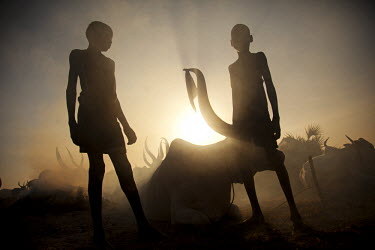 SSU0039AW Unity State, South Sudan. A cattle camp at dawn near Leer.