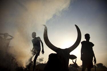 SSU0041AW Unity State, South Sudan. A cattle camp at dawn near Leer.
