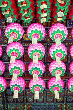 KR01185 Decorative lanterns hanging inside Bongeunsa Temple in the Gangnam District of Seoul, South Korea