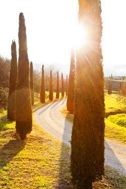 ITA2032AW Italy, Italia. Umbria. Terni district. Orvieto. Orvieto sorroundings
