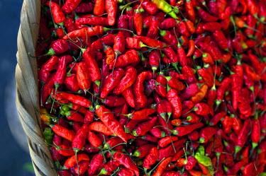 EL01023 San Salvador, El Salvador, Hot Red Peppers For Sale, Street Market