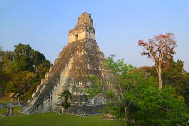 GUA1117AW Maya Archaeologial Site Tikal, Tikal National Park, Peten, Mundo Maya, Guatemala, Central America