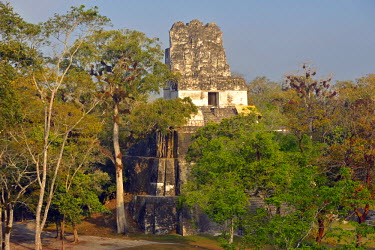 GUA1134AW Maya Archaeologial Site Tikal, Tikal National Park, Peten, Mundo Maya, Guatemala, Central America