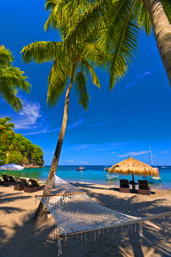 ST01116 Caribbean, St Lucia, Soufriere, Anse Chastanet, Anse Chastanet Beach