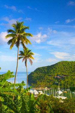ST01142 Caribbean, St Lucia, Marigot, Marigot Bay