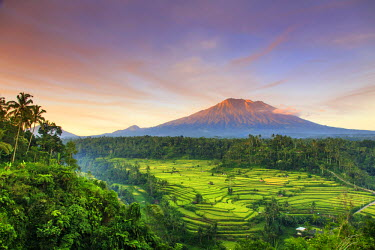 ID01496 Indonesia, Bali, Redang, View of Rice Terraces and Gunung Agung Volcano