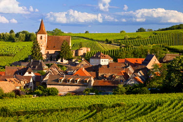 EU09BJN0513 View over town of Hunawihr along the wine route, Alsace Haut-Rhin, France.