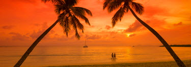 FW03063 Caribbean, Martinique, Sainte Anne, Grande Anse des Salines