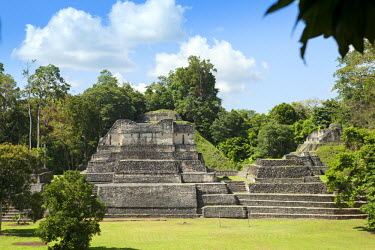 BLZ0186AW Central America, Belize, Cayo; Chiquibul Forest Reserve, Caracol archaeological site, view of the rear of structures A4, A5 and A6 . The largest building is Structure A6 - the Temple of the Wooden Lin...