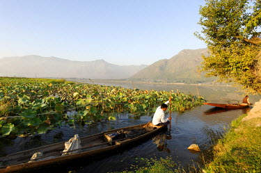 IND7460 India, Jammu & Kashmir, Srinagar, Dal Lake. Backed by the Zabarwan Hills, locals often use small pleasure boats on Dal Lake and its channels and waterways leading to hamelts and suburbs of Srinagar.