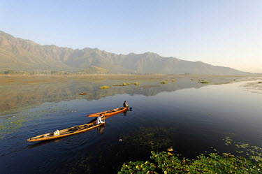 IND7461 India, Jammu & Kashmir, Srinagar, Dal Lake. Locals take small pleasure boats on the placcid waters of Dal Lake which is backed by the Zabarwan Hills.