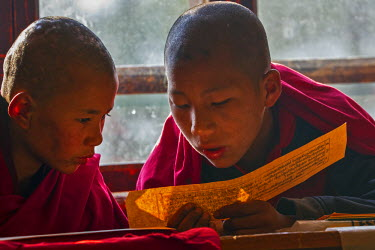 BHU1833AW Asia, Monastry, Thimphu, Bhutan. Young monks work together on ancient prayer texts passed down from generation to generation. Young monks spend most of the day at prayer sessions and classes.