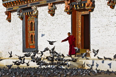 BHU1839AW Asia, Thimphu Dzong, Thimphu, Bhutan. The Dzongs or Temple Fortresses are massive white walled buildings with courtyards, wooden stairways and balconies, beautiful paintings and home to the Bhuddhist...