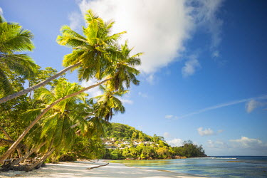 SC01217 Palm trees and tropical beach, southern Mahe, Seychelles