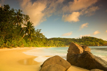 SC01239 Palm trees and tropical beach, southern Mahe, Seychelles