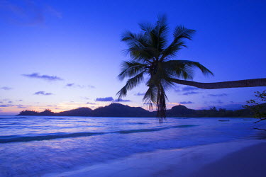 SC01243 Palm trees and tropical beach, southern Mahe, Seychelles