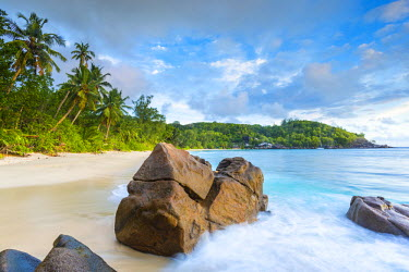 SC01246 Palm trees and tropical beach, southern Mahe, Seychelles