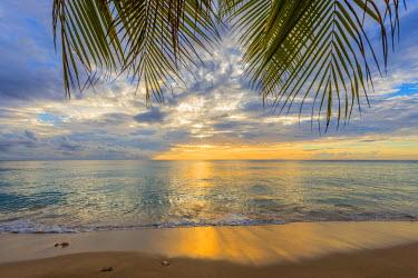 BB029RF Caribbean, Barbados, Mullins Beach