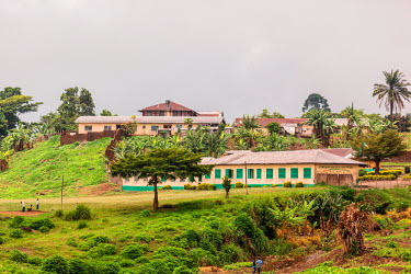 AF07ALA0073 Africa, Cameroon, Buea. Greenery on Cameroon Baptist Convention campus.