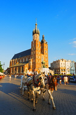 POL1247 Europe, Poland, Malopolska, Krakow, Rynek Glowny, town square, St Mary's Church, Unesco site
