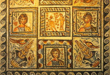 ITA2471AW Roman mosaics, 4th-5th century AD. Collection of the Palazzo Massimo / Museo Nazionale Romano. Rome, Italy