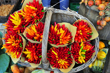 ITA2418AW Chillies. Campo de' Fiori food market. Rome, Italy