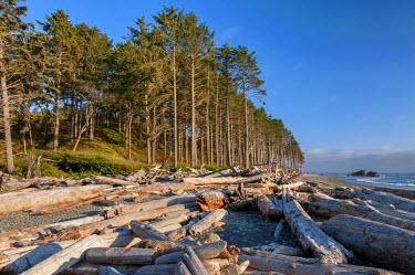 USA8899AW U.S.A., Washington,  Olympic National Park, Ruby Beach