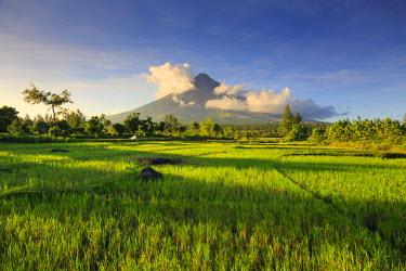 PH02214 Philippines, Souteastern Luzon, Bicol, Mayon Volcano