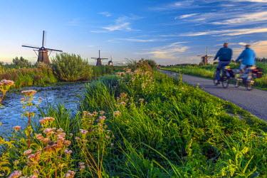 NL02238 Netherlands, South Holland, Kinderdijk (UNESCO World Heritage Site)
