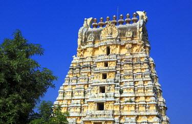 IN06357 Ekambareswarar Temple (16th century), Kanchipuram, Tamil Nadu, India