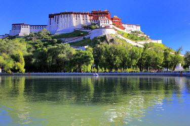 TB01135 Potala Palace, Lhasa, Tibet, China