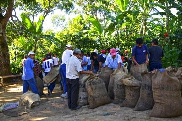 SA08CBA0230 El Salvador, Central America Carmen Organic Coffee Estate.