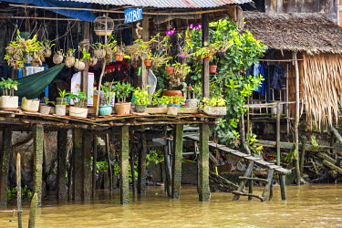 VIT0413 Vietnam, Cai Be, Mekong Delta. Plants and orchids decorate the veranda of a house built on concrete piles on the banks of the Mekong river near Cai Be.