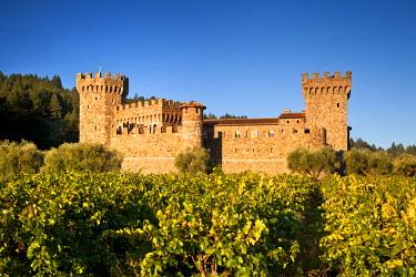 US05BJN0018 Castello di Amorosa vineyard in Napa Valley, California, USA