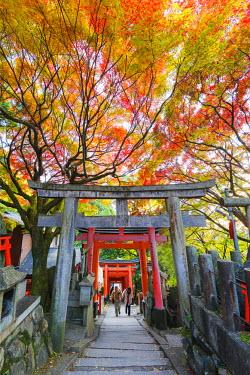 JAP0506 Asia, Japan, Honshu, Kyoto, Fushimi Inari Jinja, autumn colours; Unesco
