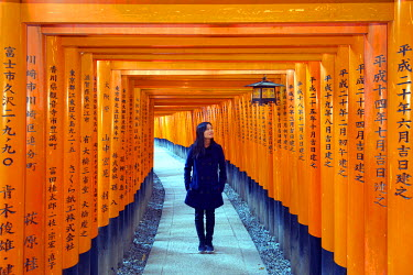 JAP0513 Asia, Japan, Honshu, Kyoto, Fushimi Inari Jinja; Unesco
